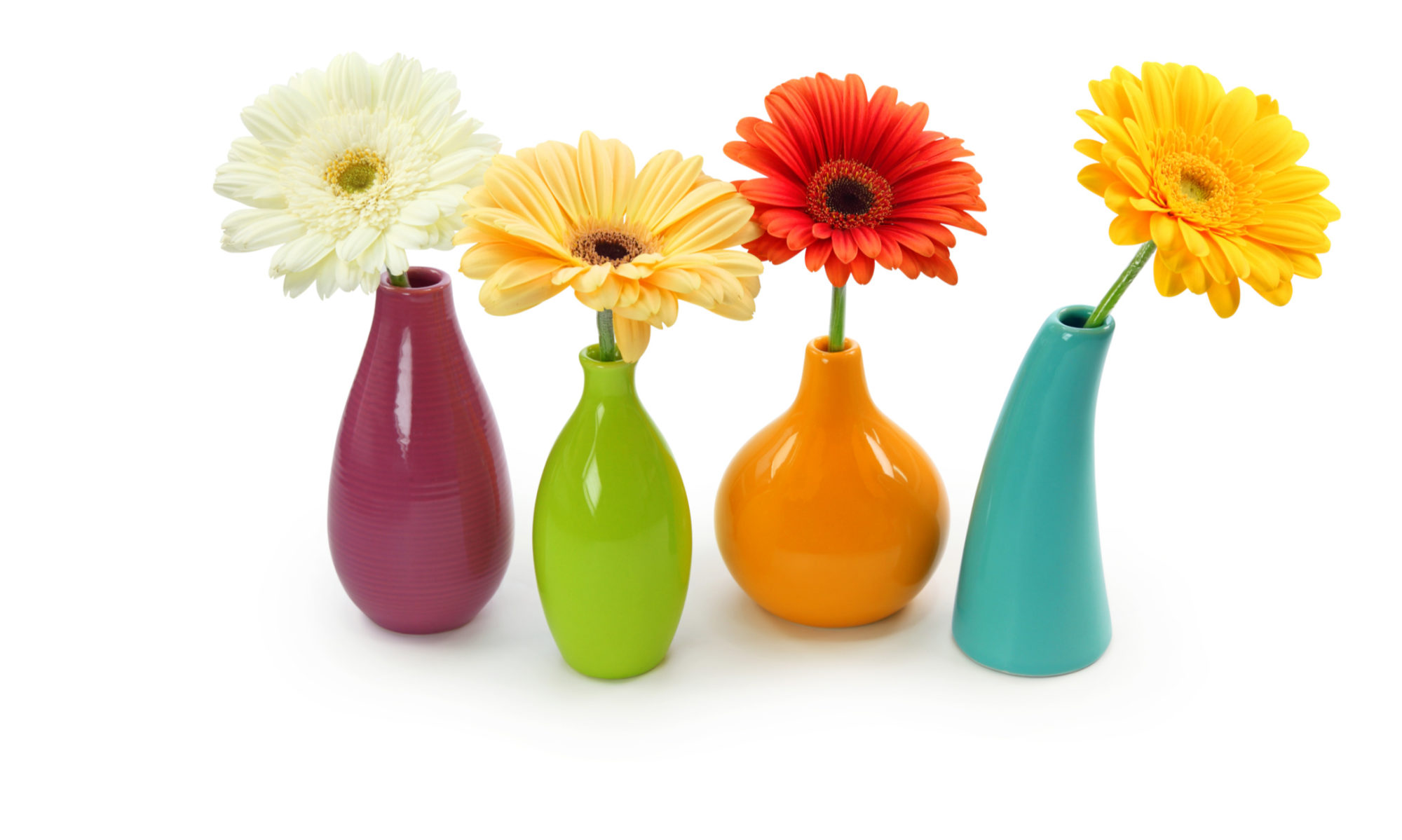 BLOOMING VASES